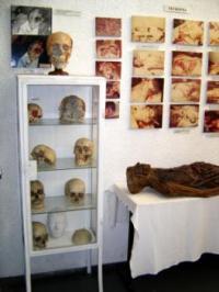 Objetos expostos no Museu do Crime (Divulgação)